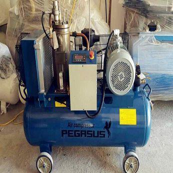 Máy nén khí trục vít Pegasus TMTV-10A